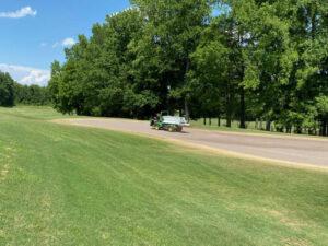 Renovation Chipping Green-1