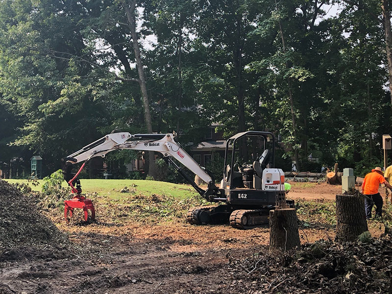 Heavy Equipment used for Tree Removal