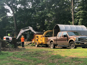 Grinding debris from Tree Removal